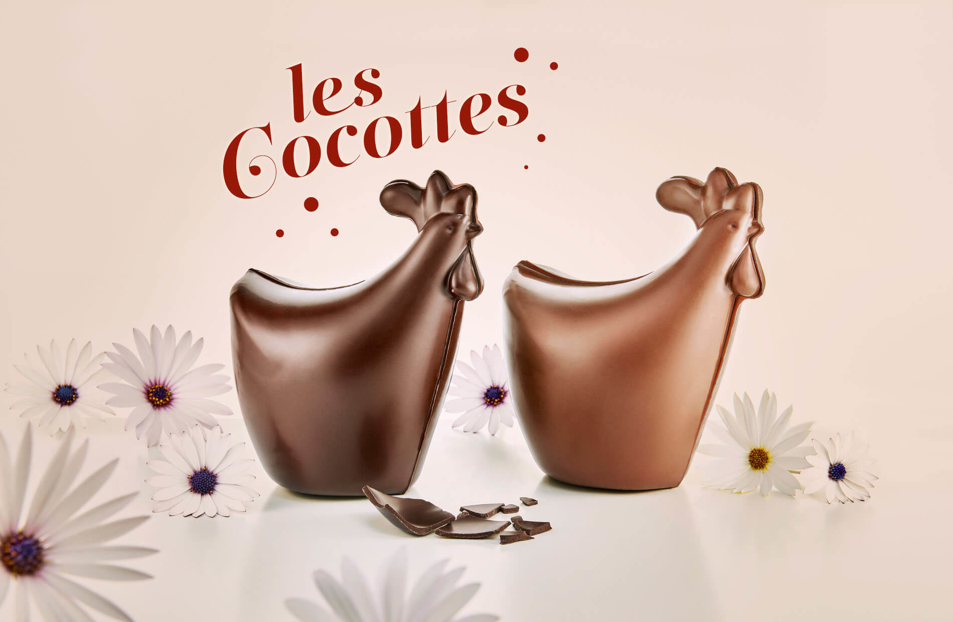 Cocottes en chocolat Motta